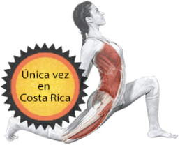 logo yoga terapia